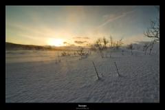 Norwegen_IMG_0147