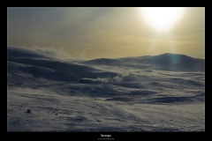 Norwegen_IMG_9937