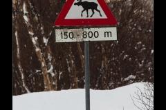 Norwegen_IMG_0097
